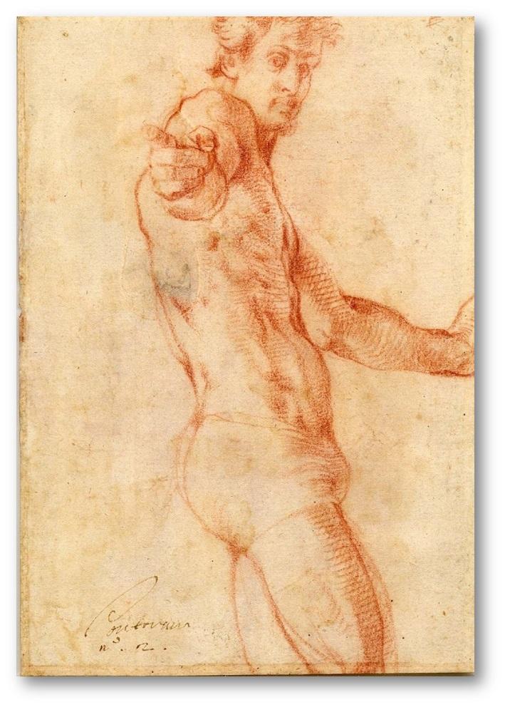 Pontormo - uomo in mutande